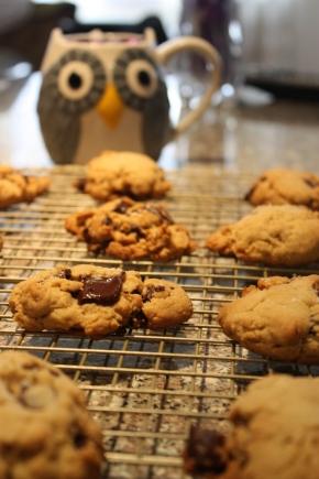 salted chocolate chunkcookies