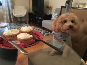 chutney turns three